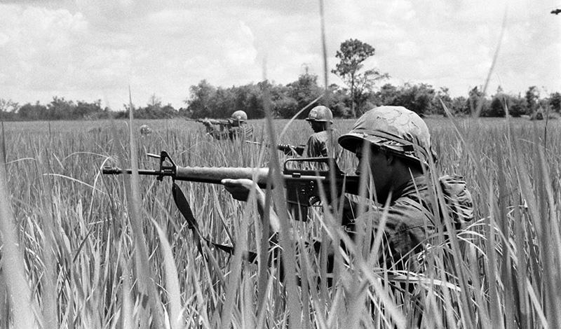 In the Brush of the Vietnam War